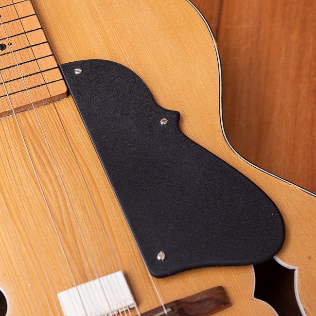 インドのスライド・ギター モハーンヴィーナ 7 - 付属品はこんな感じです