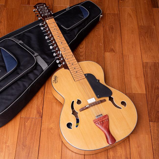 インドのスライド・ギター モハーンヴィーナの写真