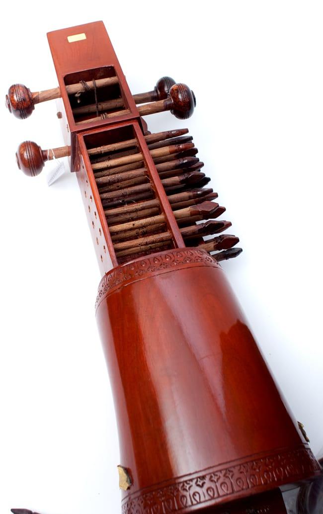 サーランギ Sarangi [ハードケース・交換弦付き] 6 - 裏面の写真です