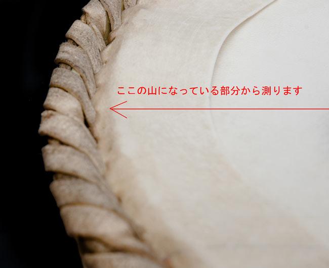 バヤンの皮 6 - 上からのサイズの測り方です