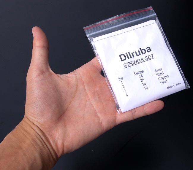 ディルルバ(Dilruba)の弦セット 3 - 手と一緒に撮影してみました