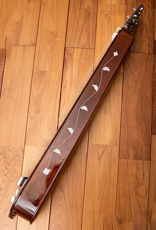【PALOMA】楽器用 ボックス・タンプーラ・スペシャル 7 - 側面にも装飾が施されています。