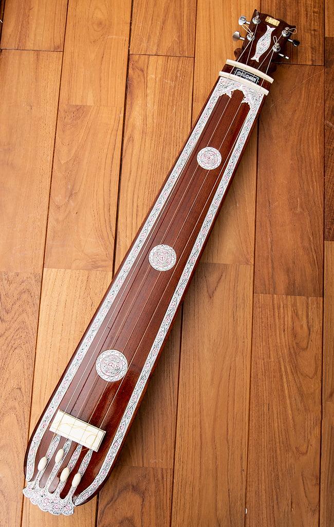 【PALOMA】楽器用 ボックス・タンプーラ・スペシャルの写真