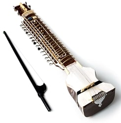 【Kartar Music House社製】ディルルバ(Dilruba)の商品写真
