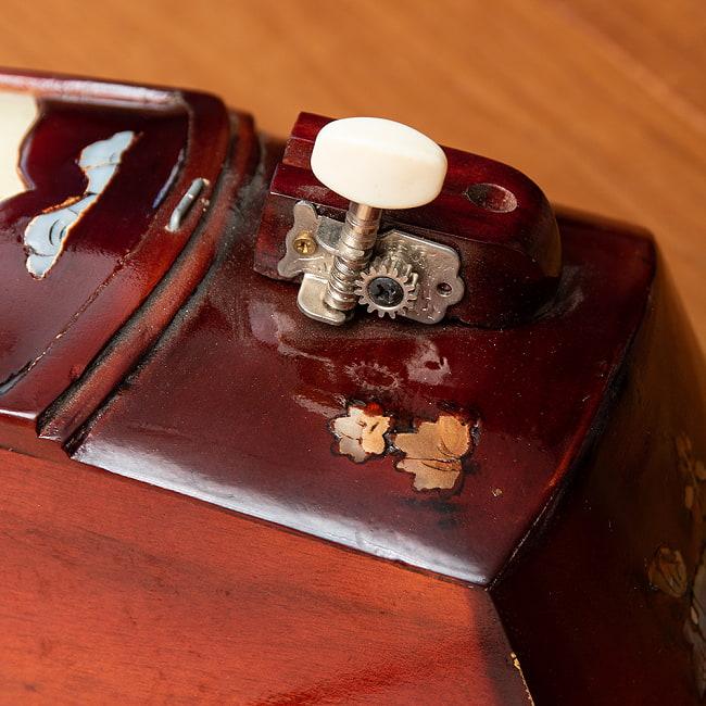 ベトナムの一弦琴 ダン・バウ 通常品(大) 3 - ボディの中央部分です。
