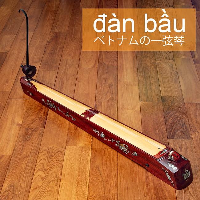 ベトナムの一弦琴 ダン・バウ 良品質(大)の写真