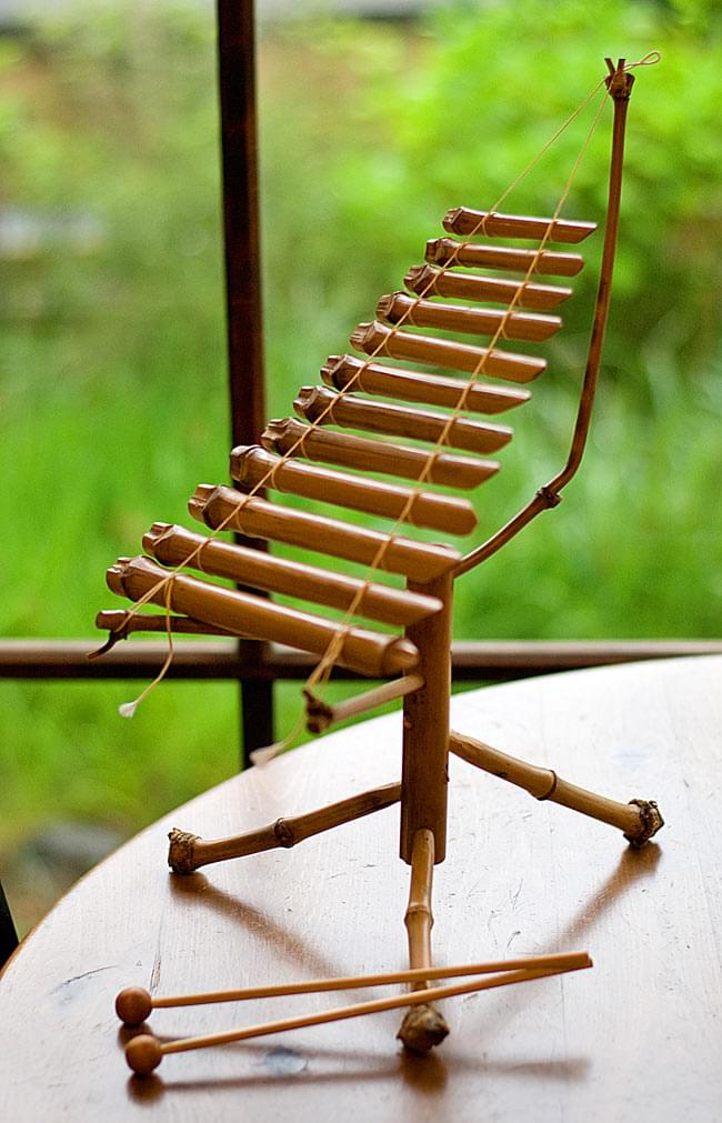 ベトナムのミニ竹琴(ダン・トルン)の写真