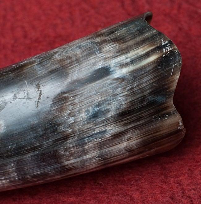 ベトナム水牛のホーン 3 - ホーンの先端部分です。自然素材ですので、柄は1個1個異なります