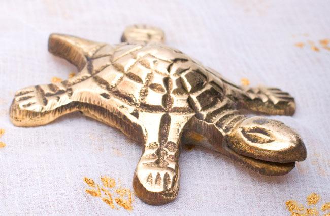 インド風水のプレート(kachwa plate) - 約8cm 4 - 亀には口の部分に切り込みが入っています。