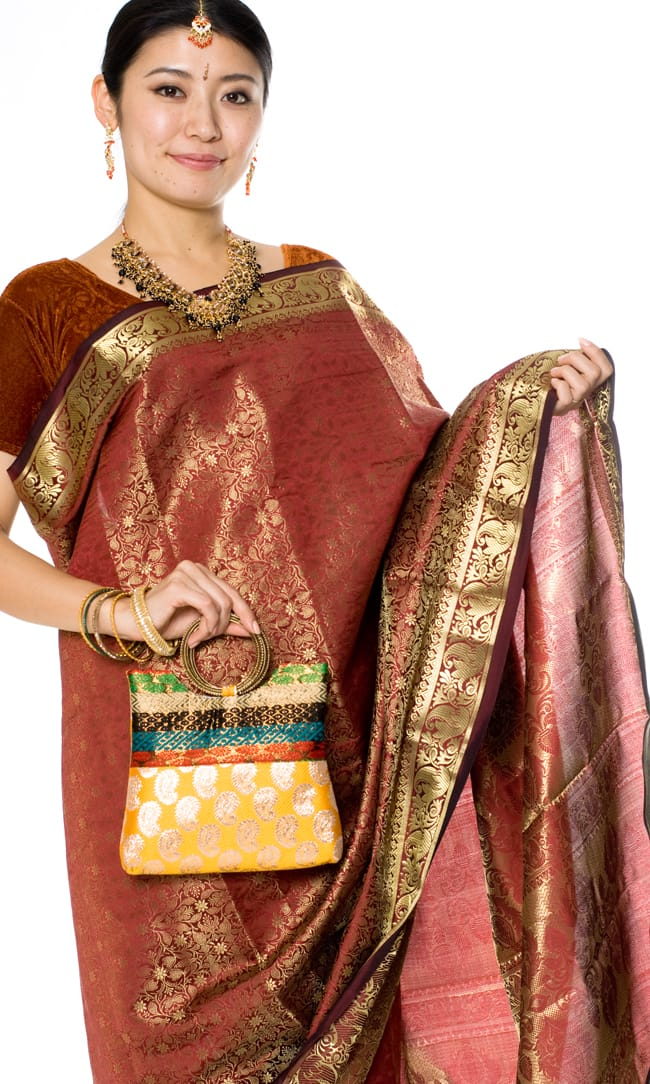 インドのゴージャスハンドバッグ - ペイズリー 7 - サリーに合わせて持ってみました。パンジャビドレスにもよく合います。
