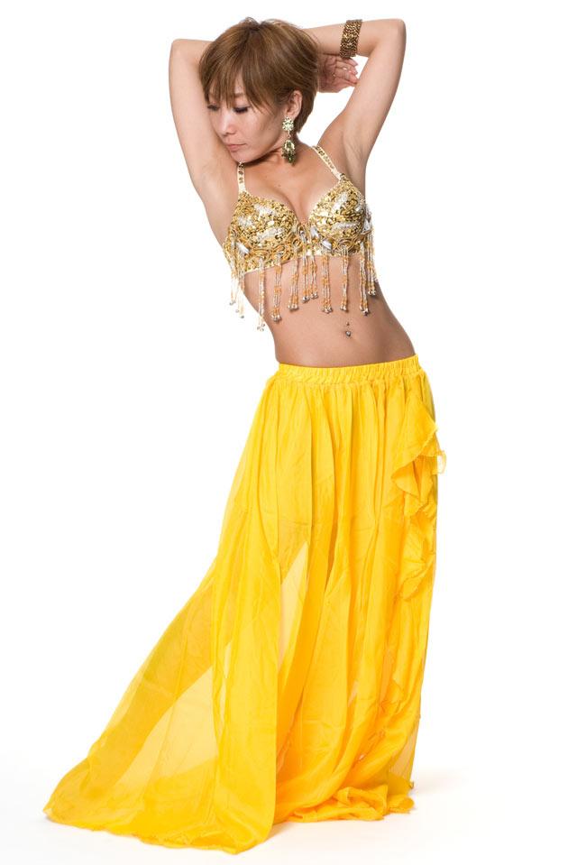 ベリーダンス衣装 スカート・ブラ 上下セットの写真