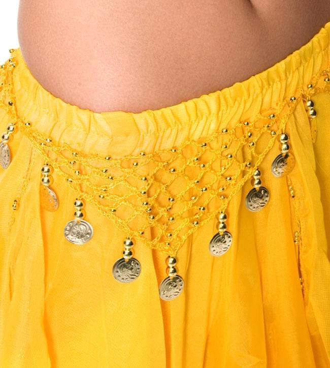 ベリーダンス コイン付きふんわりシフォンスカート 6 - 腰回りと、縁の部分にコインが付けられております。照明などの光を綺麗に反射してくれますよ。