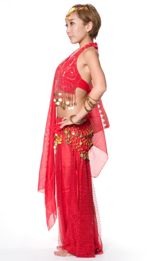 ベリーダンス・アラビアン衣装 - トップス&パンツ・アクセ・ベールセット 2 - 横からの写真です