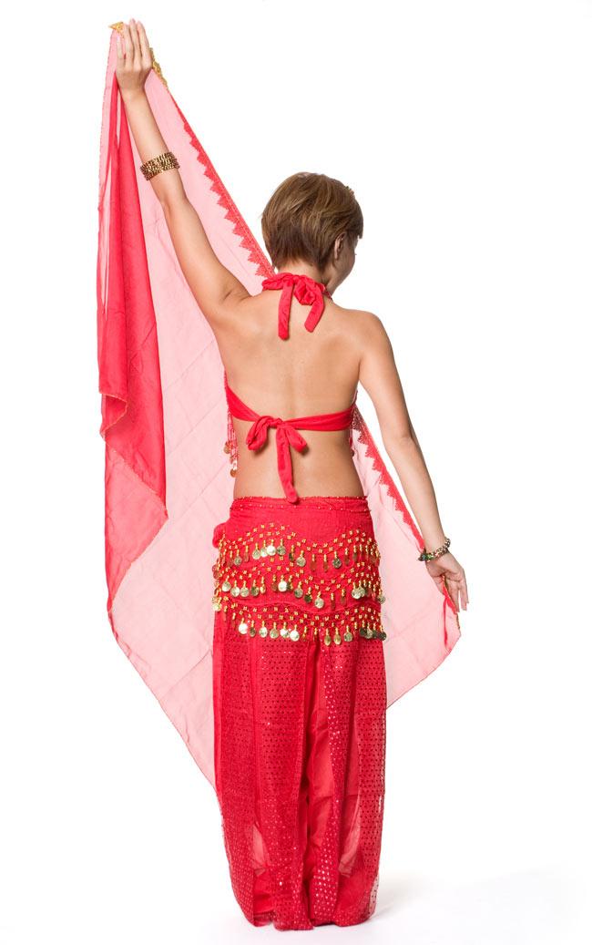 ベリーダンス・アラビアン衣装 - トップス&パンツ・アクセ・ベールセット 3 - 後ろからの写真です