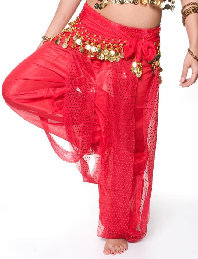 ベリーダンス・アラビアン衣装 - トップス&パンツ・アクセ・ベールセット 5 - パンツの写真です