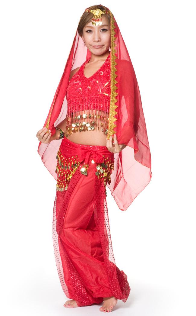 ベリーダンス・アラビアン衣装 - トップス&パンツ・アクセ・ベールセットの写真