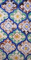 ラジャスタンの古城のフラスコ画