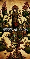 【限定品】DANCE OF SHIVA2009【
