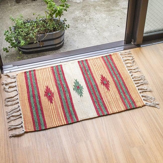 インドのキリムラグ【約60cm×約40cm】 2 - 窓際で使用してみました。