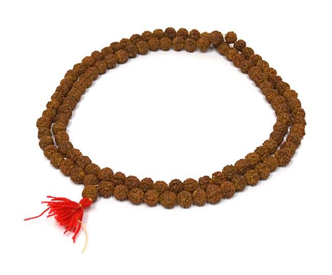 ルドラクシャ(菩提樹)の数珠の写真