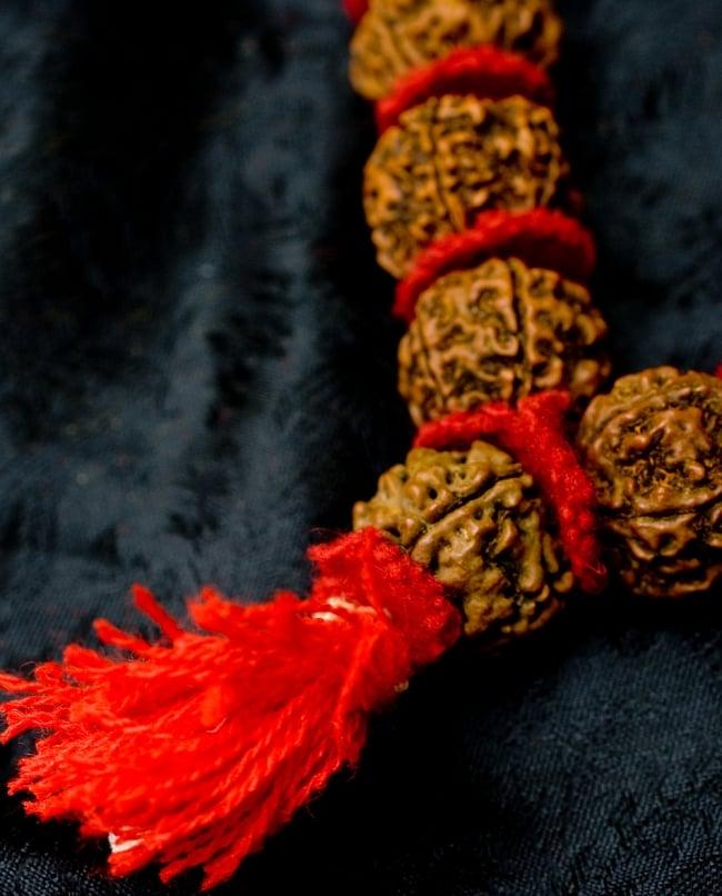 菩提樹の数珠(大粒)-約60cmほどの写真3 - 商品の房の部分をズームしてみました