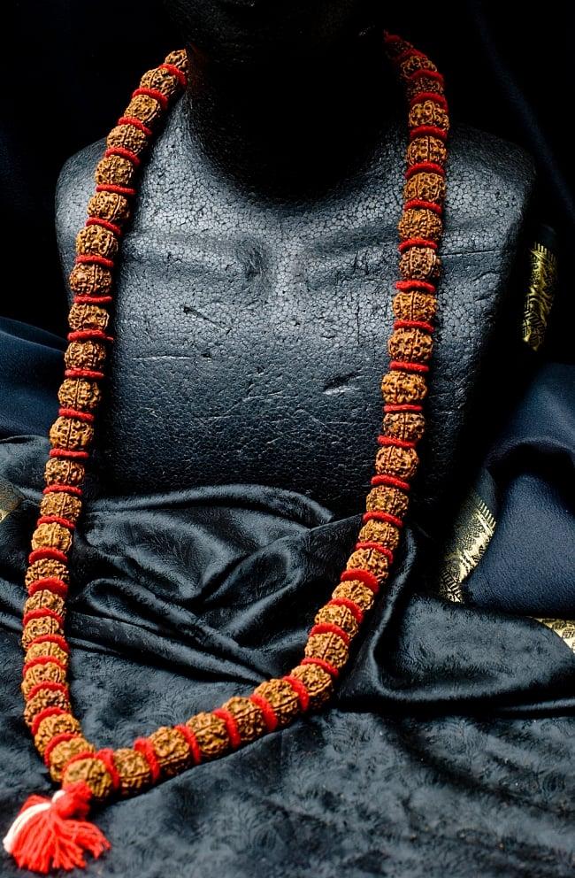 菩提樹の数珠(大粒)-約60cmほどの写真5 - 首にかけるとこのような感じになります