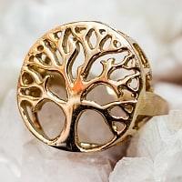 生命の樹と円環のゴールドリング