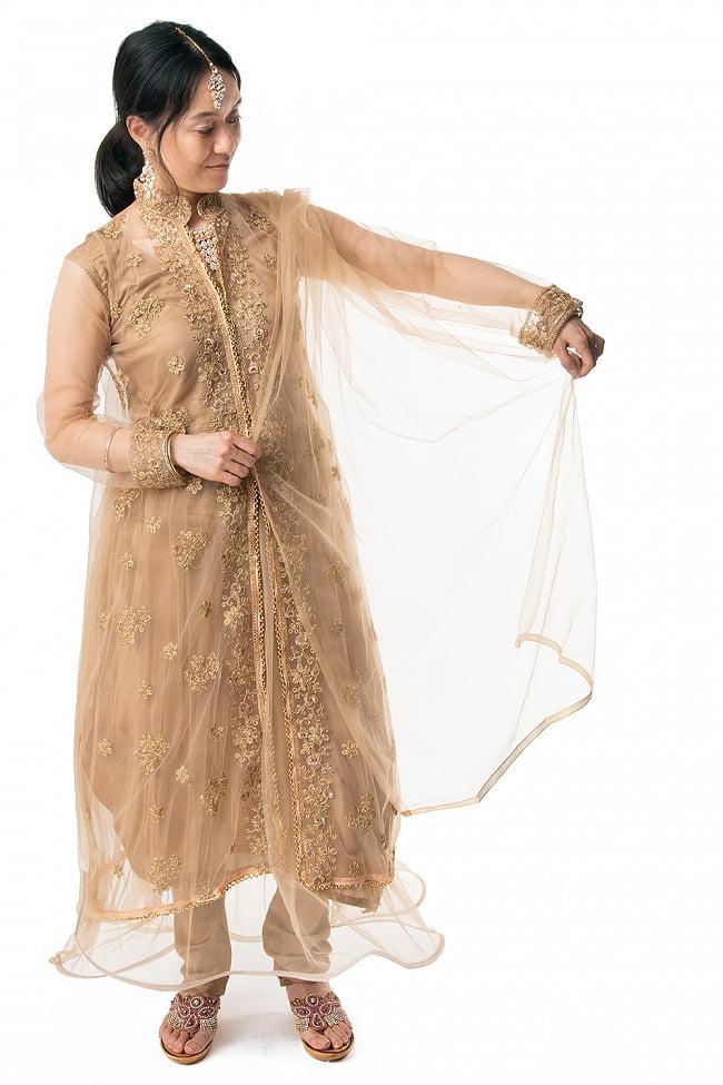 インドのゴージャスパンジャビ・ドレスセット 7 - 広げてみました。ショールの透け感が美しいです。