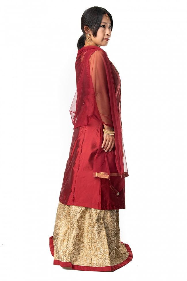 インドのゴージャスパンジャビ・ドレスセット 5 - 違う角度から見てみました。