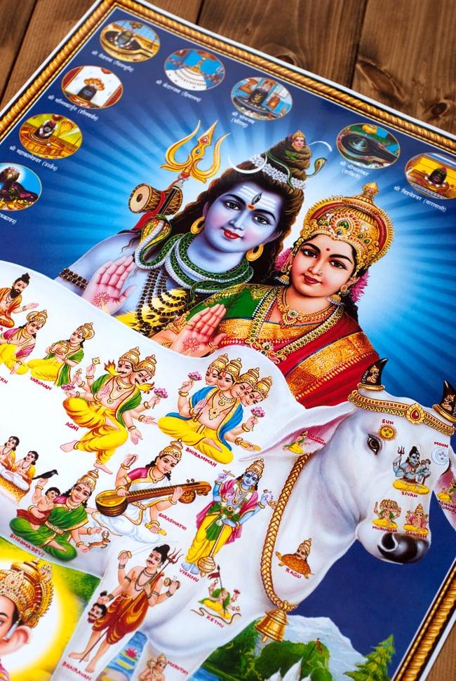 〔約70.5cm×約50cm〕大判インドのヒンドゥー神様ポスター - 聖牛とインドの神様 2 - 拡大写真です。インドらしい綺麗な彩色が魅力です。
