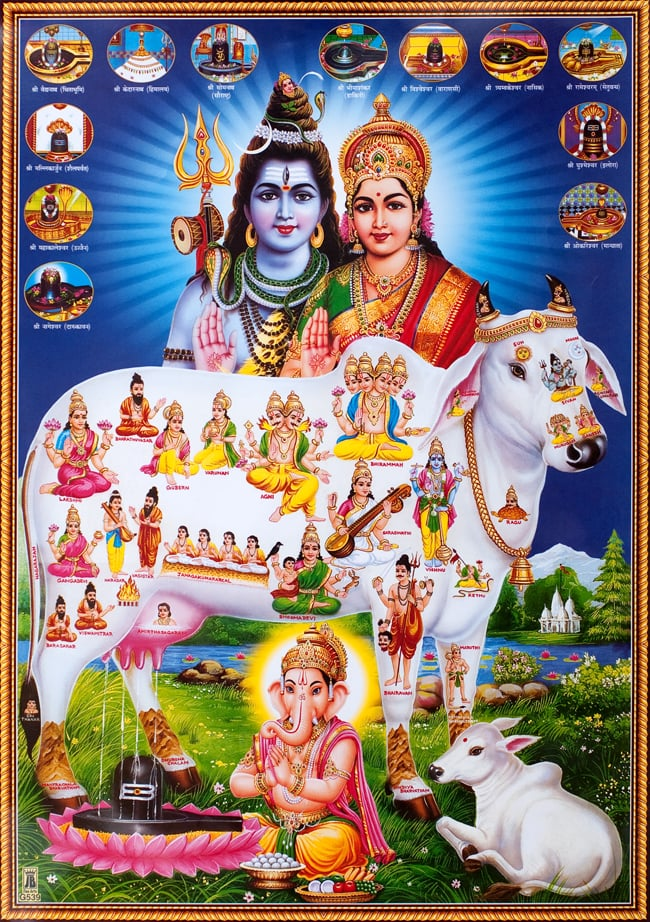 〔約70.5cm×約50cm〕大判インドのヒンドゥー神様ポスター - 聖牛とインドの神様の写真