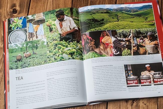 【豪華本】the food of INDIA 11 - 眺めているだけで楽しい一冊です。