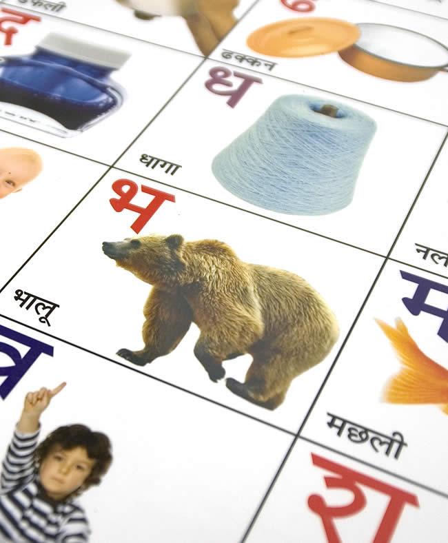 インドの学習ポスター - デーヴァナーガリーの学習[中] 2 - 勉強のお供に、ちょっとしたディスプレイにどうぞ