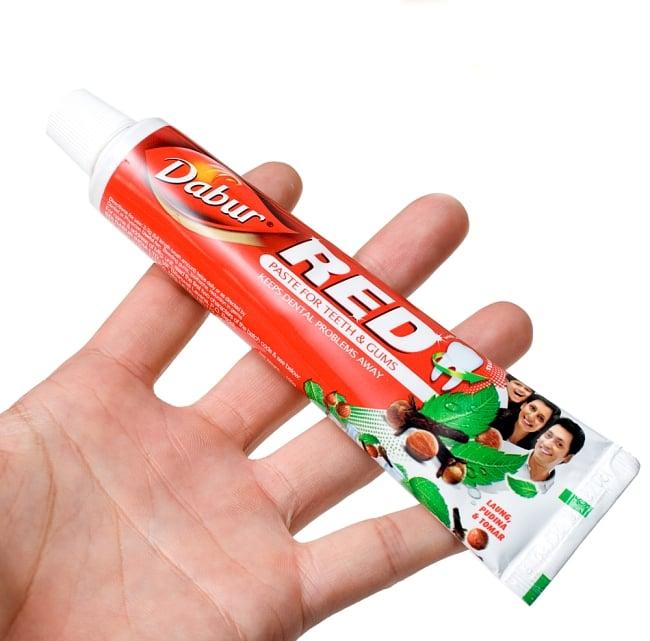 RED - アーユルヴェーダ歯磨き【Dabur】 5 - 手に持ってみました。