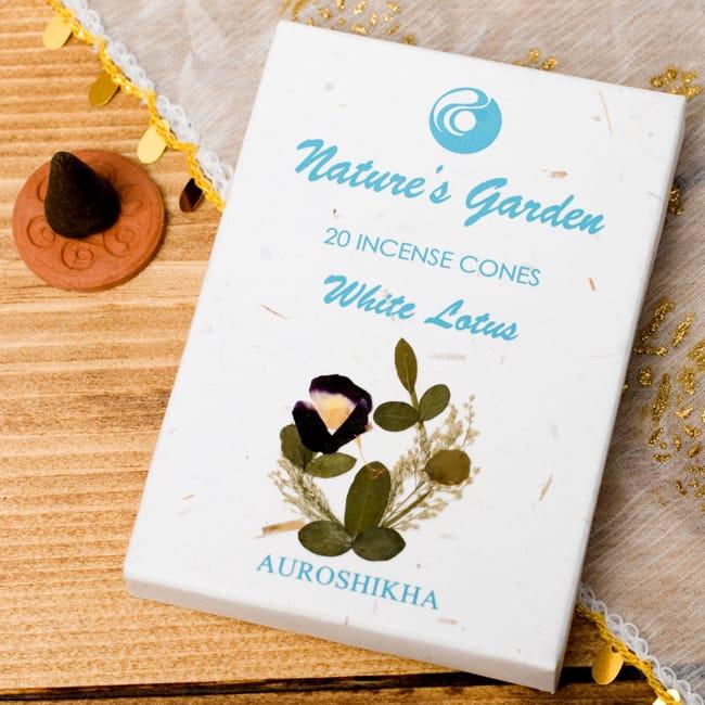 白蓮(WHITE LOTUS)の香り - オウロシカコーン香の写真