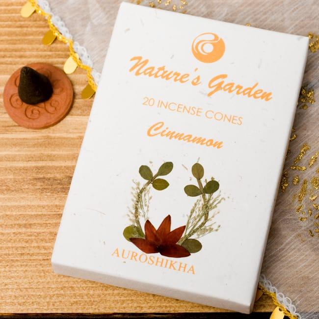シナモン(CINNAMON)の香り - オウロシカコーン香の写真