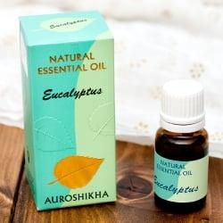 ユーカリ(EUCALYPTUS)の香り - オウロシカ  エッセンシャルオイル(IND-INS-352)