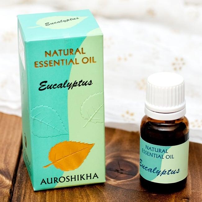 ユーカリ(EUCALYPTUS)の香り - オウロシカ  エッセンシャルオイルの写真