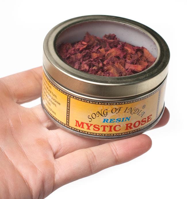 ミスティック・ローズ(Mystic Rose) - 花弁香 4 - サイズ比較のために手に持ってみました