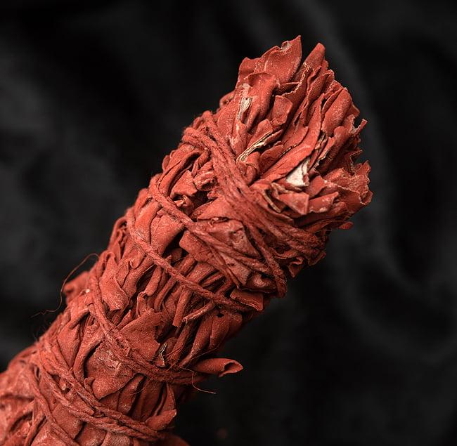 ドラゴンブラッド カリフォルニア セージ スティック 11cm  2 - 端っこはこんな感じです