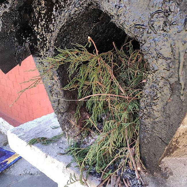 カリフォルニア ジュニパー  無農薬 ワンド バンドル スティック  3本セット [10cm  25g程度]スマッジング 浄化 7 - インドの山奥、アルナーチャル・プラデーシュ州の僧院でジュニパーが野外の香炉にそのまま入れられているところです