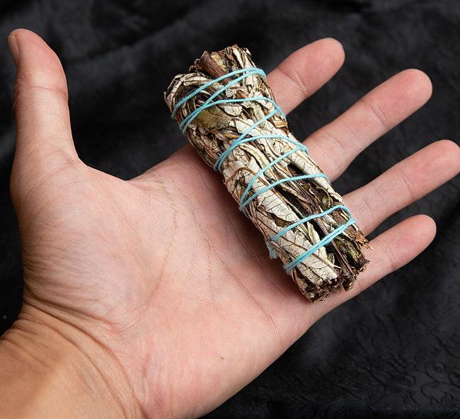 イェルバ サンタ Yerba Santa 無農薬 ワンド バンドル スティック [10cm  25g程度]スマッジング 浄化 5 - サイズ比較のために手に持ってみました