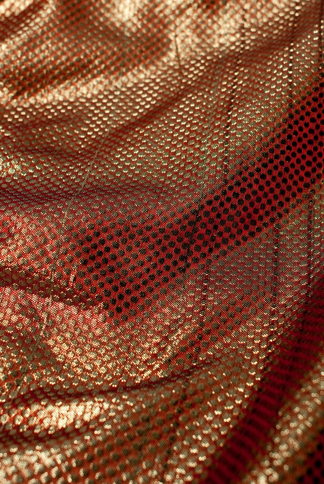 〔1m切り売り〕インドの伝統模様布 - ドット柄 樺色〔幅110cm〕の写真