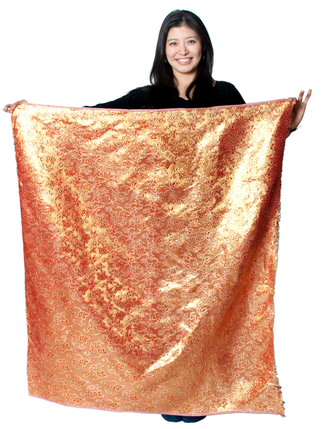 〔1m切り売り〕インドの伝統模様布 - ボーダー柄 虹色×金〔幅105cm〕の写真6 - 大きさを感じていただく為、1m分に切った布をモデルさんに持ってもらいました。(以下は同ジャンル品[MB-RSCLTH-188 幅約108cm]の写真です。)