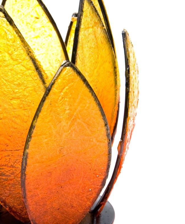 ロータスのキャンドルスタンド - オレンジの写真4 - アップにしてみました。