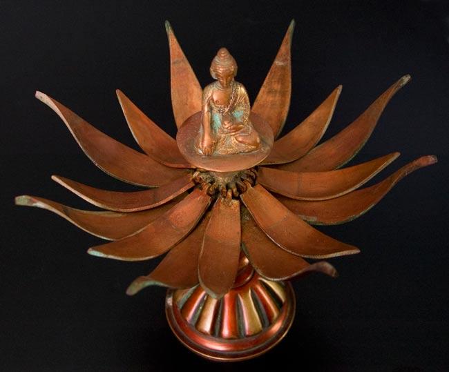 蓮の花とアクショービヤ[一点物]の写真5 - 別のアングルからです