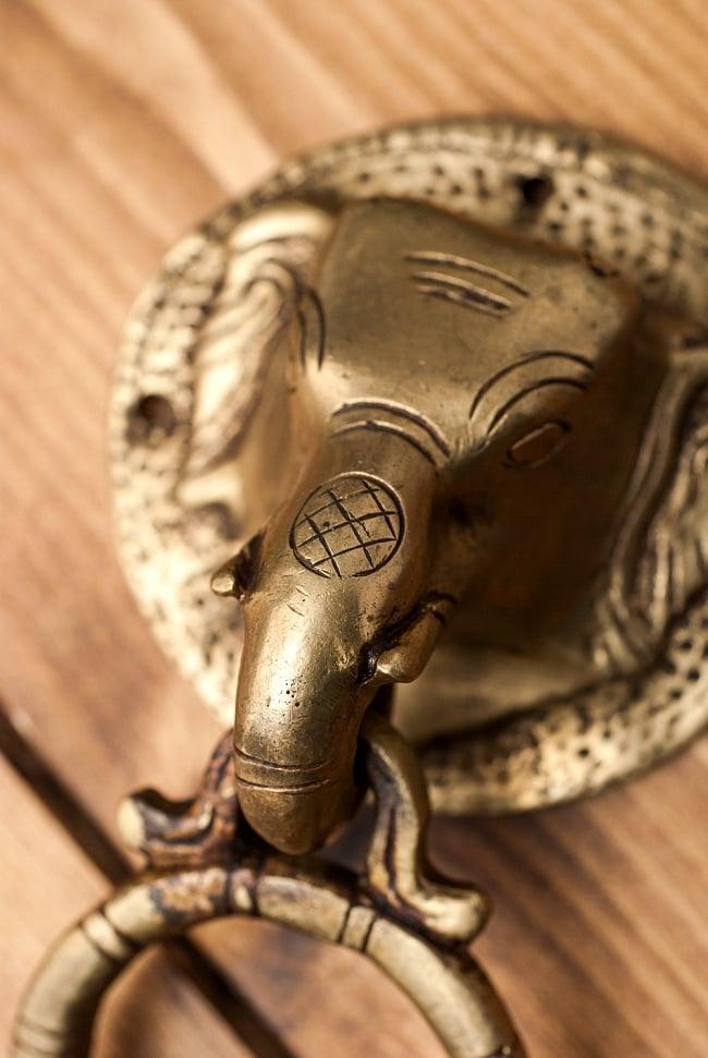 象のドアノッカーの写真3 - 別角度からの拡大写真です。