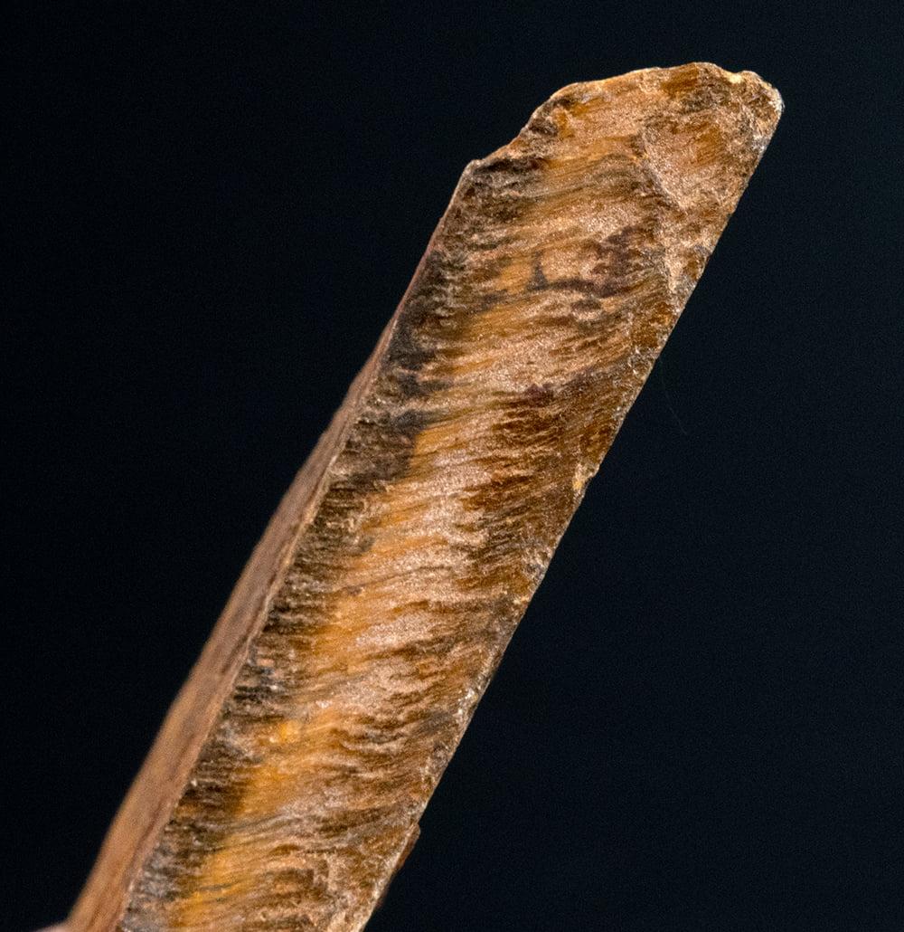 タイガーアイの原石[50-70g][アソート] 5 - 研磨前ですが、タイガーアイの模様が見えますね