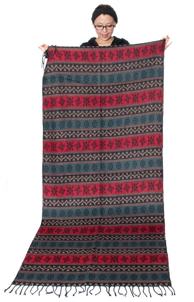 【大判】伝統ダッカ織りデザインのストール 8 - サイズを感じていただく為、モデルさんに持ってもらったところです。(以下の写真は、同ジャンル品のものになります。)
