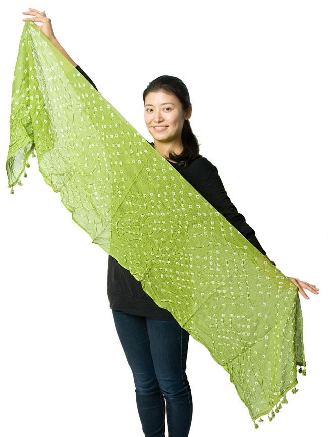 インドの絞り染めドゥパッタ - うぐいす 6 - 色違いの商品を女性スタッフが広げて持ってみました。大きさのご参考にどうぞ。
